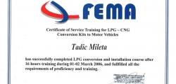 sertifikat_fema
