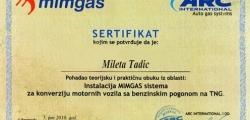 sertifikat_mm